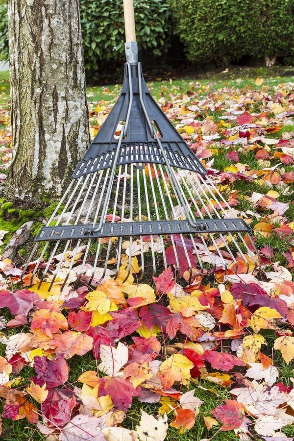 L'automne nettoient le temps photos stock