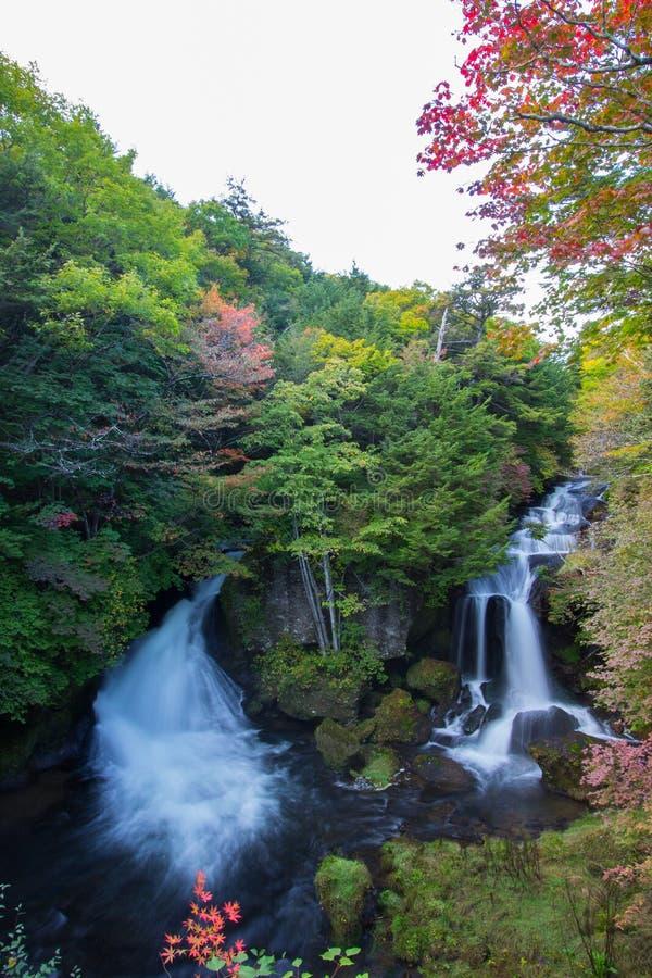 L'automne tôt chez Ryuzu tombe, Nikko, préfecture de Tochigi, Japon image stock