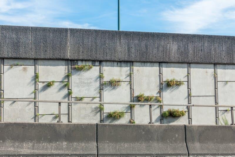 L'autoroute plante le plan rapproché images libres de droits