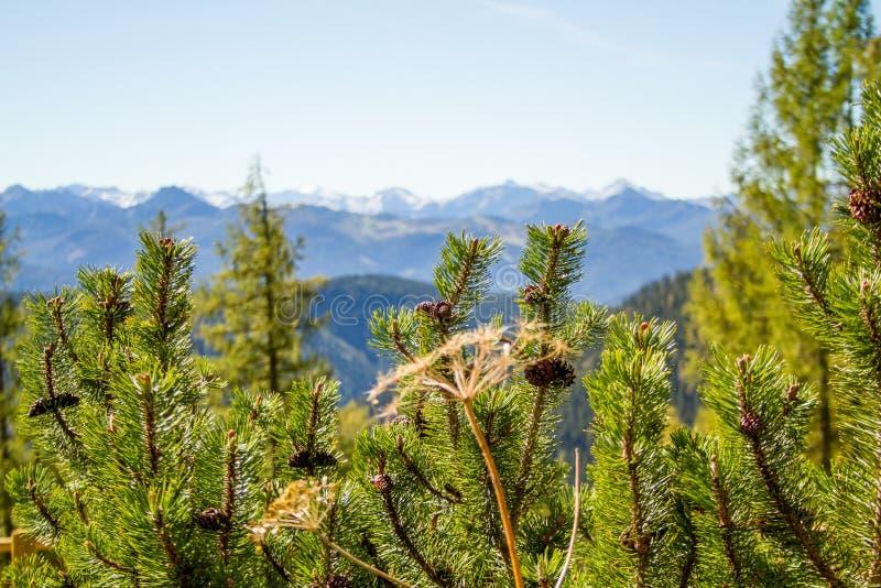 l'autriche Arête alpine 09/25/2018 : Montagne de Dachstein à une altitude de 3500 mètres au-dessus de niveau de la mer image stock