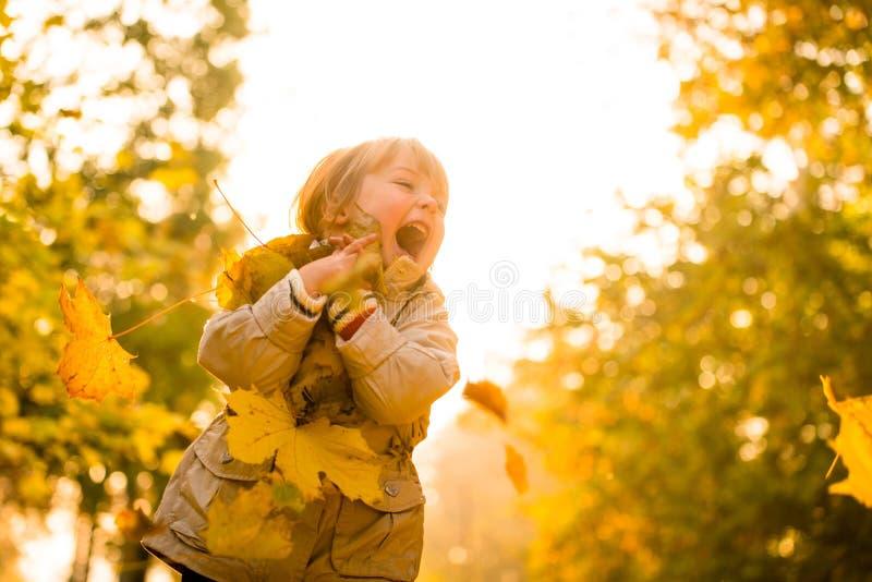 L'autunno è grande tempo fotografia stock libera da diritti