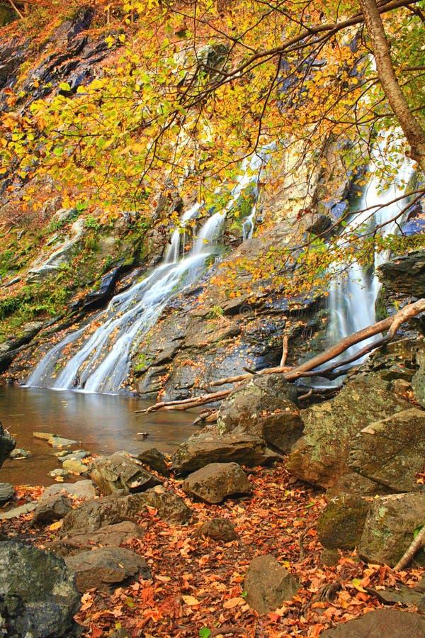 L'autunno cade II fotografia stock libera da diritti