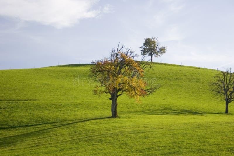L'autunno colora II fotografia stock