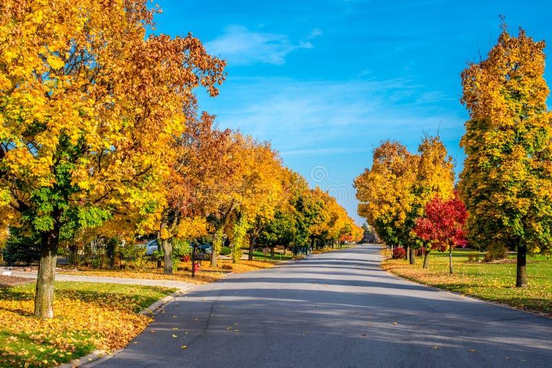 L'autunno colora la linea una via fotografia stock