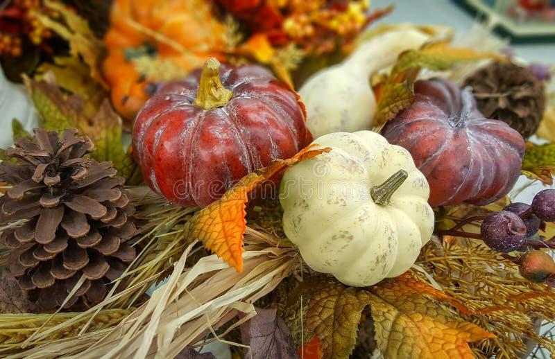 L'autunno, decorazione con una zucca, zucche, pigna di caduta, va Sfondo naturale immagini stock libere da diritti