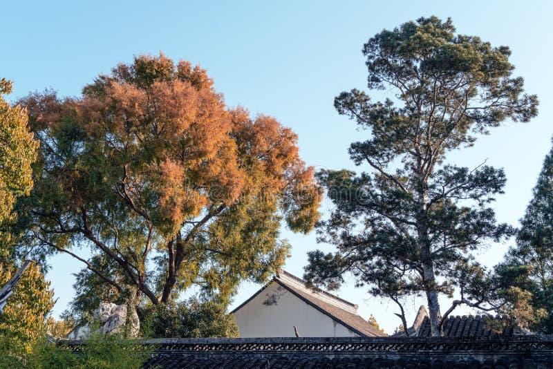 l'autunno nel parco del giardino di Suzhou in Cina immagini stock libere da diritti