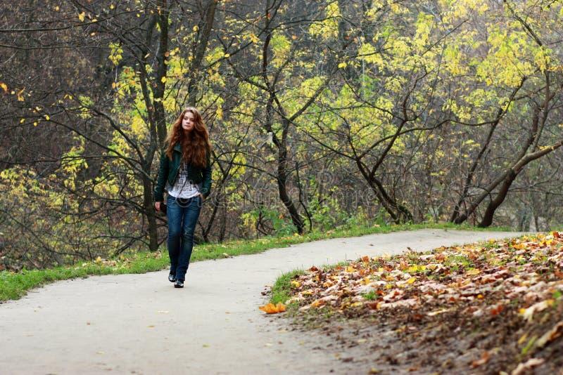 L'autunno va fotografia stock
