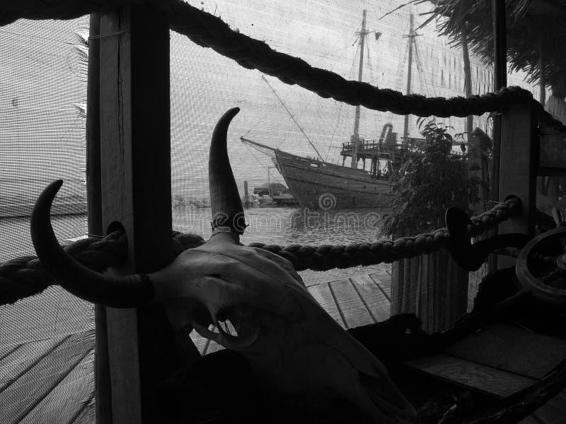 L'aviron photographie stock libre de droits