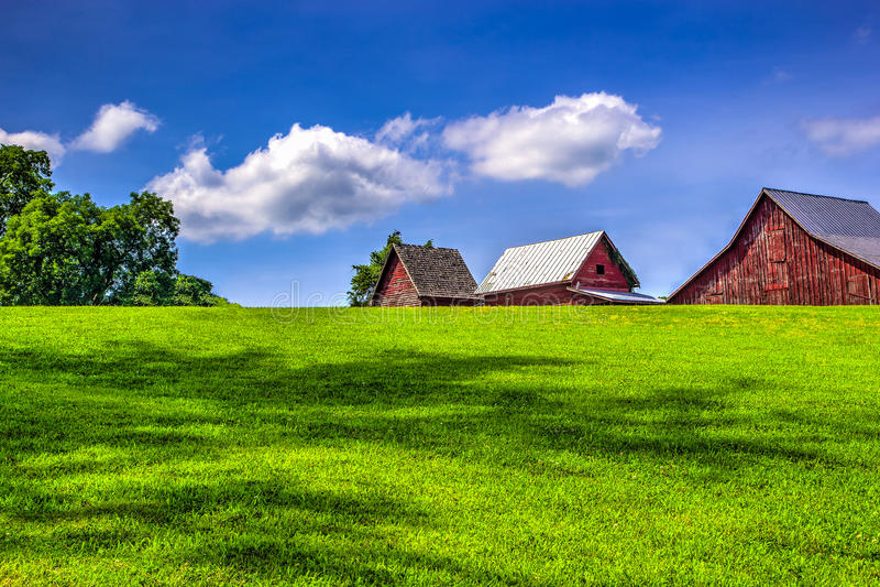 L'azienda agricola fotografie stock