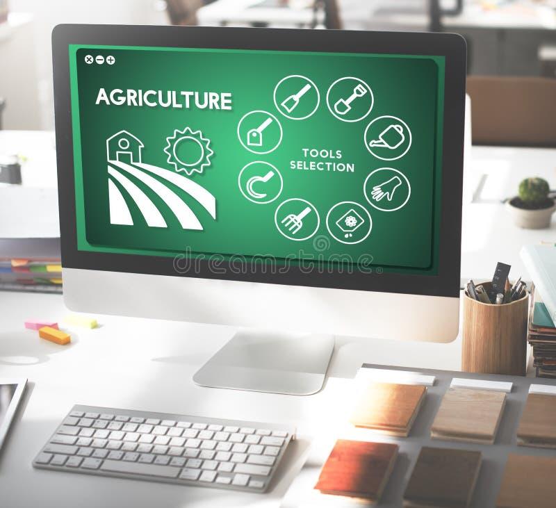 L'azienda agricola dell'agricoltura il concetto degli impianti di produzione fotografia stock libera da diritti