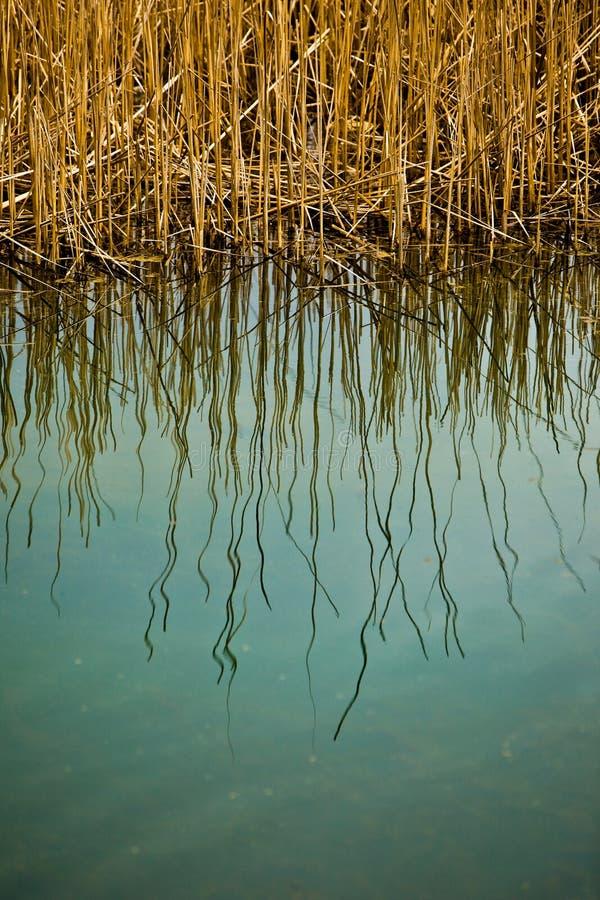 L'eau abstraite images stock