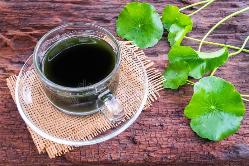 L'eau asiatique de fines herbes images stock