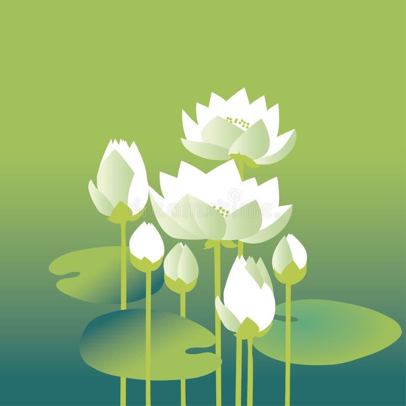 L'eau blanche élégante tendre florale illustration stock
