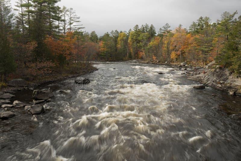 L'eau blanche se précipite par la rivière de Penobscot photographie stock