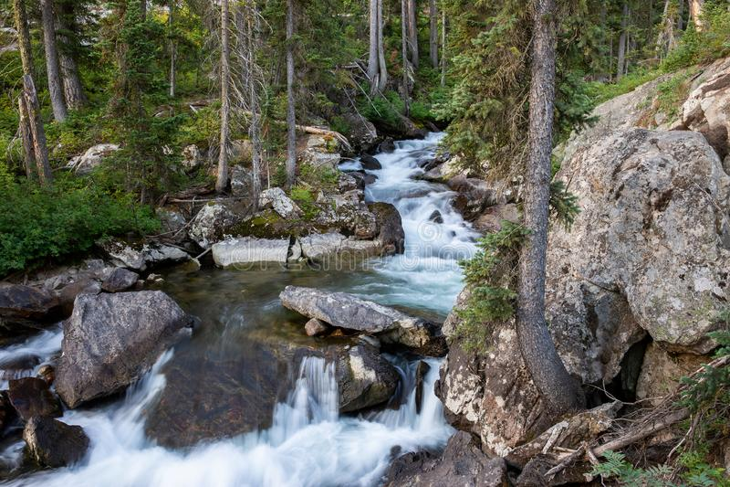L'eau blanche traversant une forêt de montagne et au-dessus de grands roches et rochers photos stock