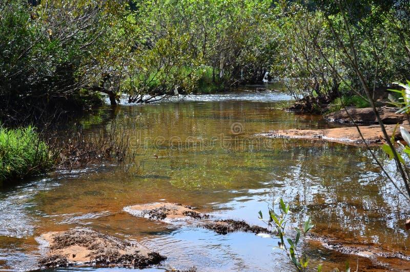 L'eau claire image libre de droits