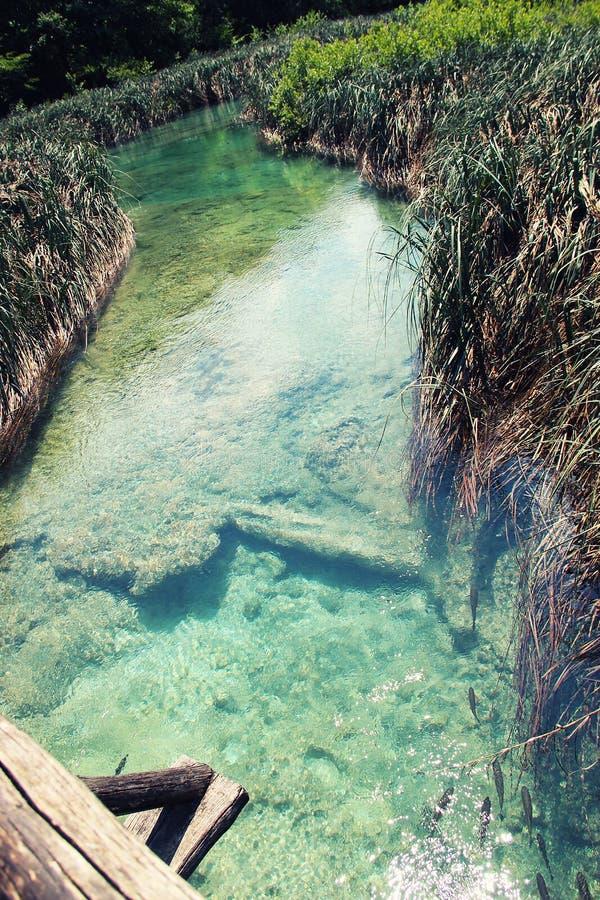 L'eau claire dans les poissons et le bateau de lacs Plitvice photos libres de droits