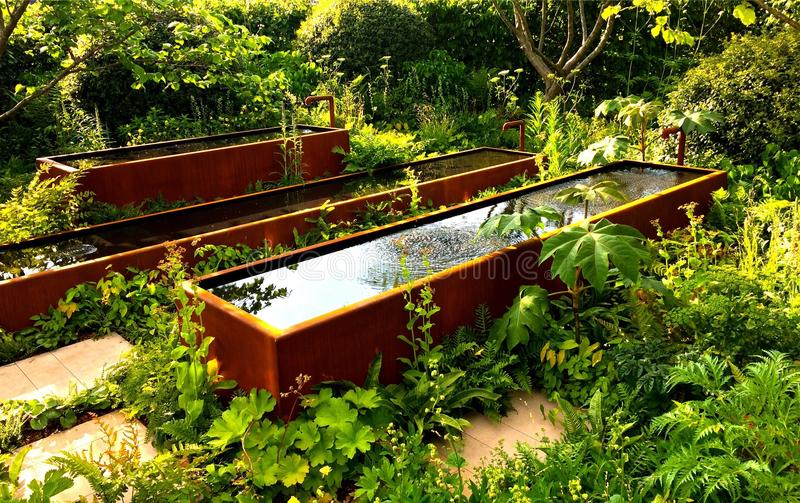 L'eau dans le jardin images libres de droits