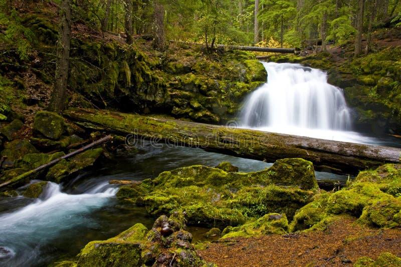 L'eau de cascade à écriture ligne par ligne montant en cascade au-dessus des roches photos libres de droits