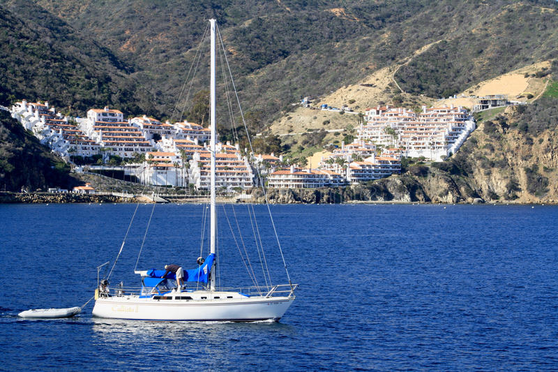 L'eau de Catalina Island Sailboat Sailing Blue photos libres de droits
