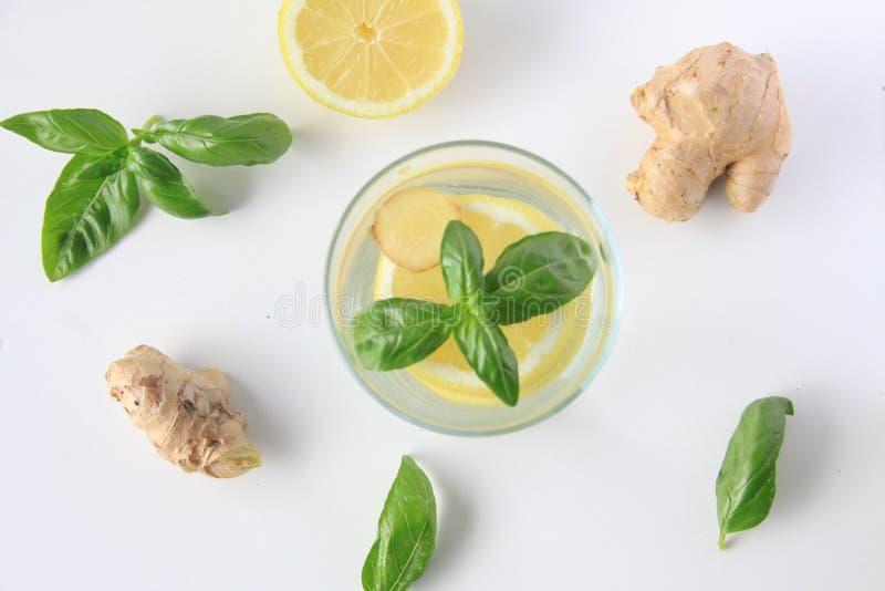 L'eau de citron, de basilic et de gingembre infusée images libres de droits