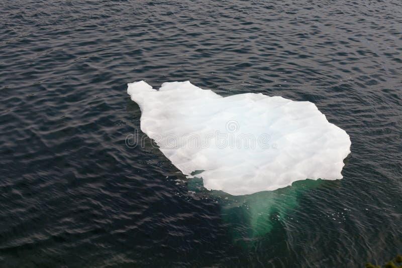L'eau de dérive de fonte d'iceberg de l'Océan Atlantique image stock