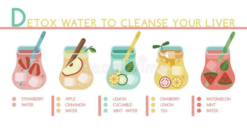 L'eau de Detox pour nettoyer votre foie illustration de vecteur