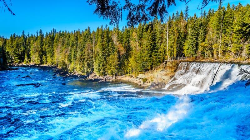 L'eau de la rivière de Murtle comme elle dégringole le tranchant de Dawson Falls en Wells Gray Provincial Park photographie stock libre de droits
