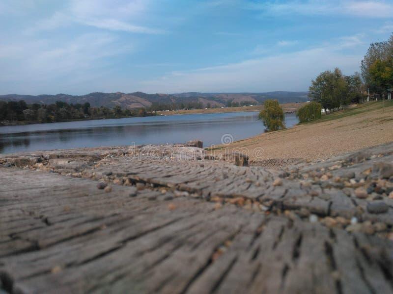 L'eau de lac de black&white d'arbre de rivière de pont photo stock