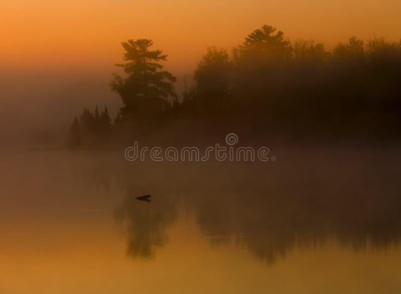 l'eau de lever de soleil de forêt de regain photos libres de droits