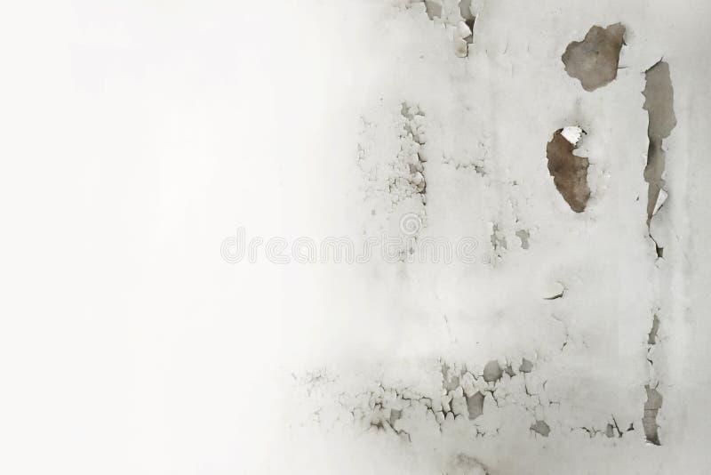 L'eau de pluie coule sur le plafond endommageant, épluchant la peinture et l'espace moisi et vide pour le texte images libres de droits