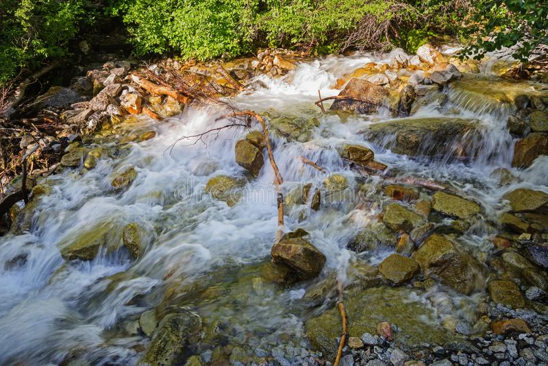 L'eau de précipitation photographie stock libre de droits