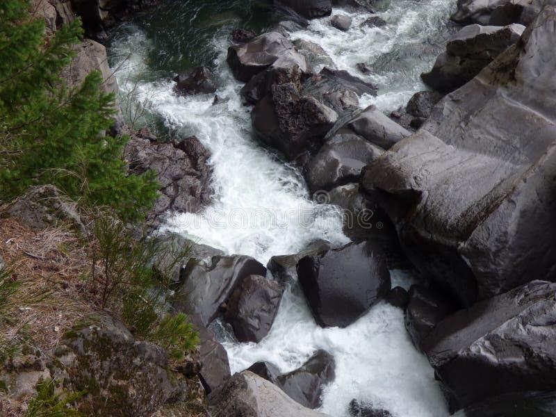 L'eau de précipitation photo libre de droits