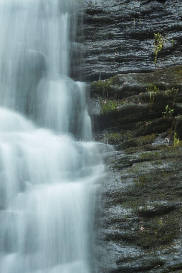 L'eau de précipitation dans le ` s de charpentier tombe dans Granby, le Connecticut photo stock