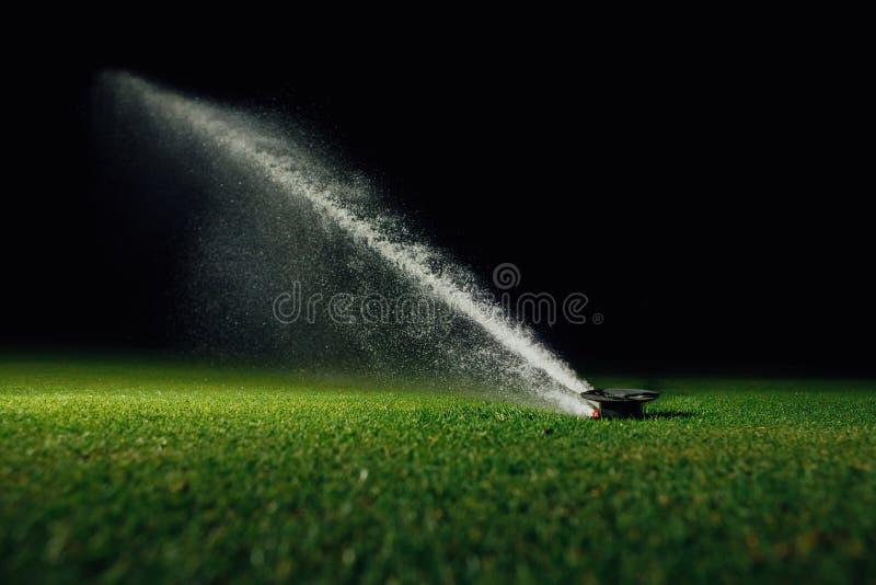 L'eau de pulvérisation d'arroseuse automatique de pelouse au-dessus de l'herbe verte de terrain de golf photos libres de droits