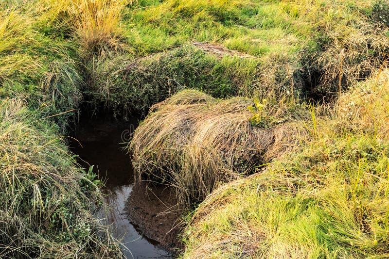 L'eau de réflexion de caniveau de prairie photographie stock libre de droits