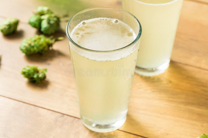 L'eau de scintillement régénératrice de Falvoured d'houblon image stock