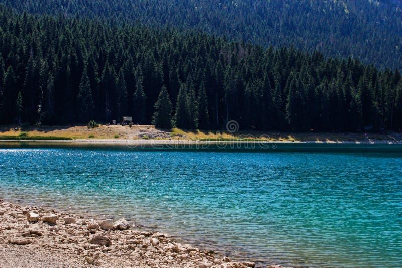 L'eau de turquoise du lac, de la for?t de pin et des montagnes Fond de stup?faction avec la nature photos libres de droits