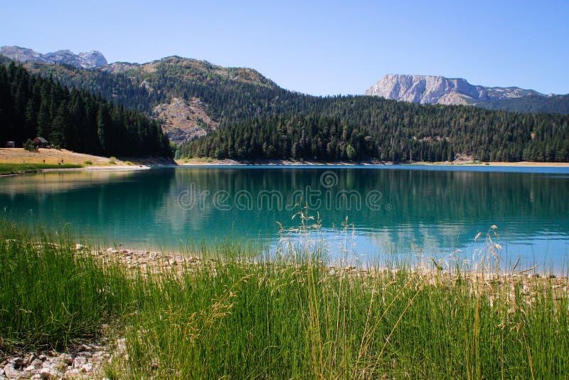 L'eau de turquoise du lac, de la for?t de pin et des montagnes Fond de stup?faction avec la nature images stock