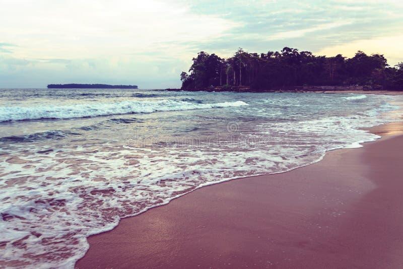 l'eau de turquoise de la mer à la plage de laxmanpur, Neil Island, image stock