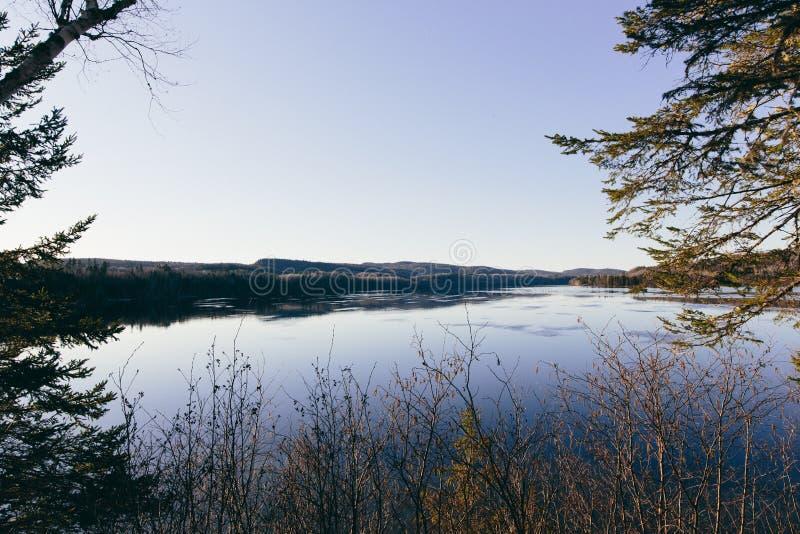 L'eau et arbres photos libres de droits