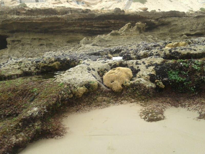 Download L'eau et herbe de roche image stock. Image du roche, herbe - 77150881