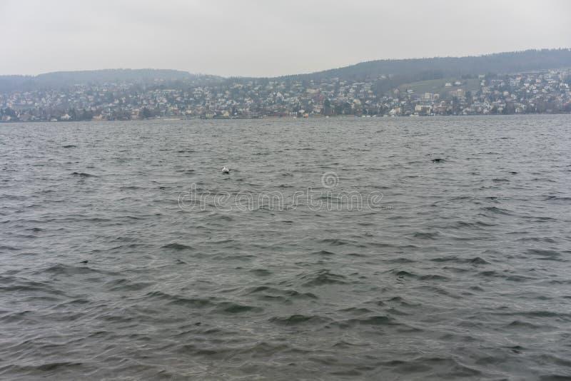 L'eau et la montagne de Zurich de lac aménagent en parc avec le temps pluvieux photographie stock libre de droits