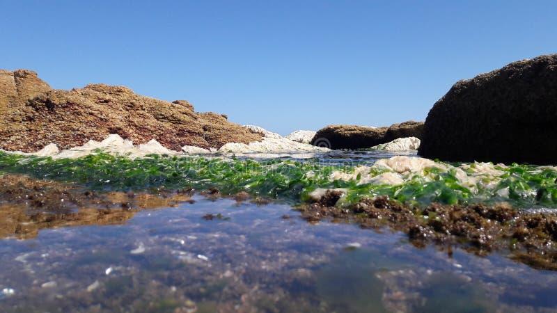 L'eau et nature image libre de droits