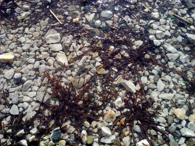L'eau et pierres images libres de droits