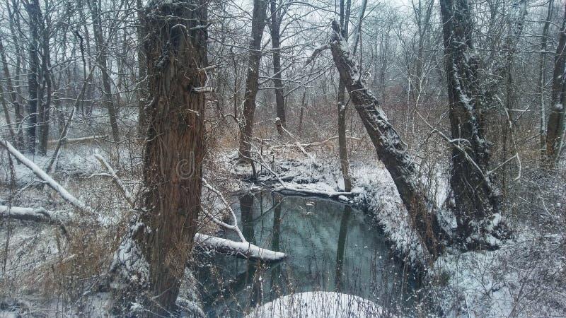 L'eau hivernale photographie stock libre de droits