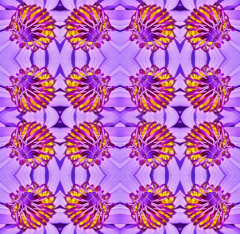 L'eau lilly illustration de vecteur