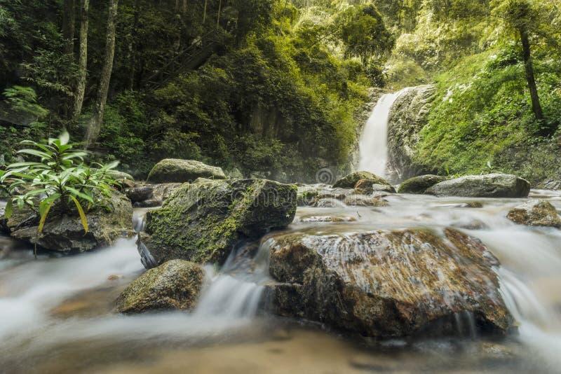 L'eau molle du courant en parc naturel, belle cascade dans la for?t tropicale images libres de droits