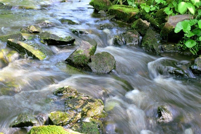 L'eau rapide en rivière de montagne avec des pierres images stock