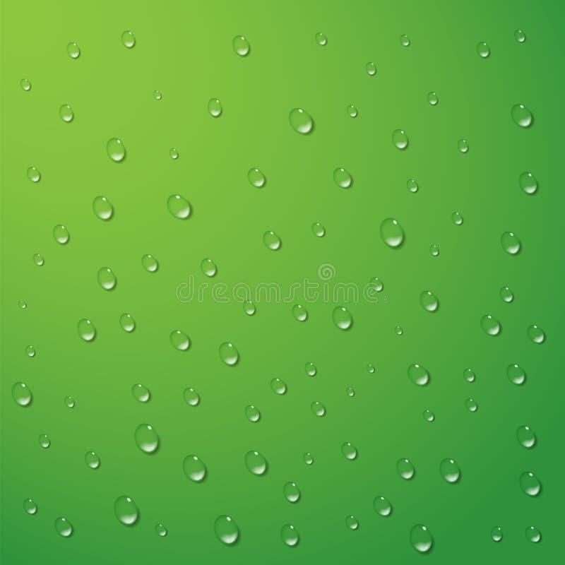 L'eau relâche le fond de vecteur Condensation de pluie sur une surface vert clair Rosée propre légère, illustration abstraite illustration libre de droits